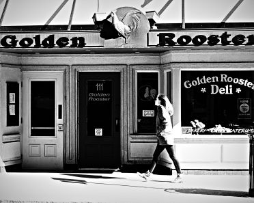 The Golden Rooster