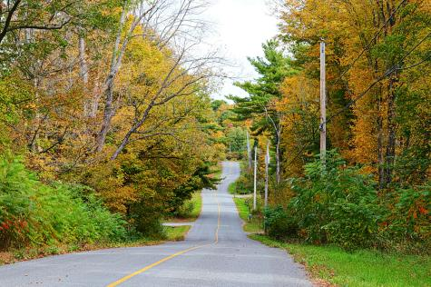 Fall Colours in South Frontenac