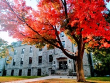 Fall Colours on Queen's Campus